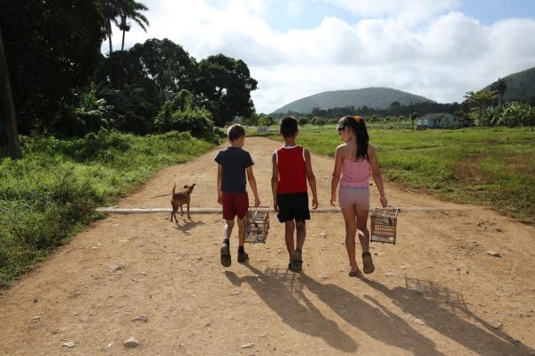 Niños de nuestros campos. Foto: Jesús Reina Carvajal